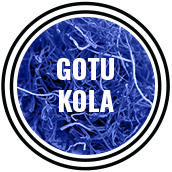 mandrotest ingredient gotu kola