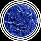 mandrotest ingredients saffron