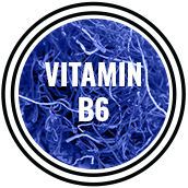 mandrotest ingredient vitamin b6