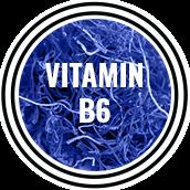 mandrotest ingredient vitamin b6